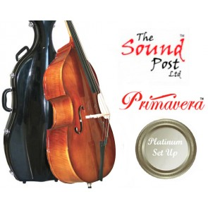 The Sound Post BF030-34G-P Eastman 80  Laminate 3/4 Size (Three Quarter Size) Bass Outfit Platinum Set-up
